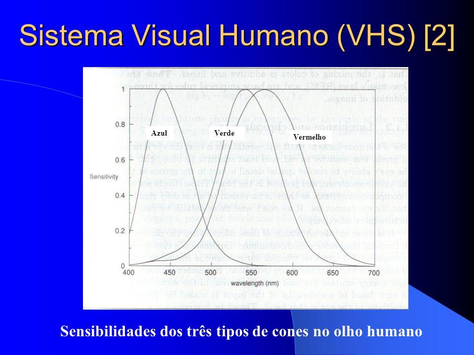 Sistema Visual Humano (VHS) [2]